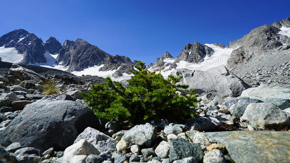 Glaciers of the Wind (1)