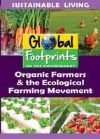 Global Footprints 4